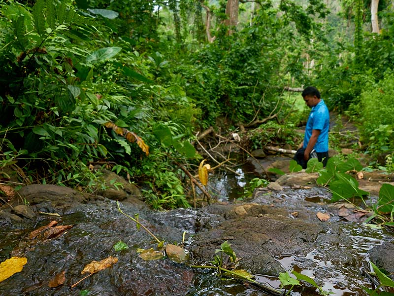 This stream is the source of fresh drinking water for 71 households and a primary school in Rukuruku